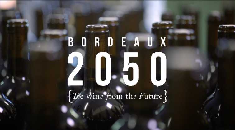 BORDEAUX 2050 – The real taste of climate change